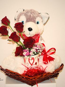 Valentine Special Husky Dog and Roses